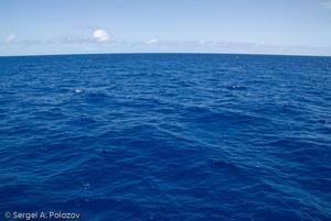 К концу века мировой океан может лишиться до 7% кислорода