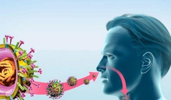Йод — сильное оружие против вирусов и инфекций